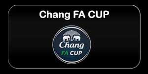 chan fa cup