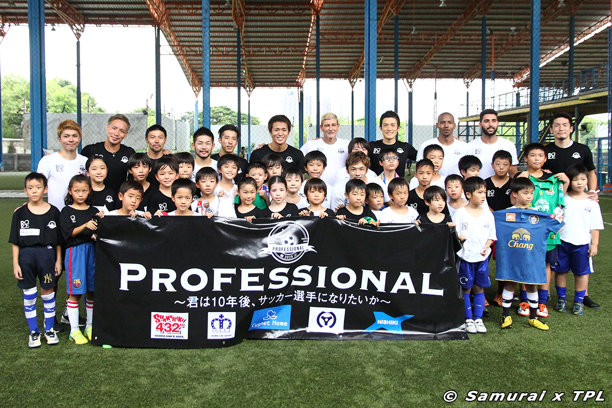 professional-cover